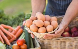 7 raisons d'adopter une alimentation locale